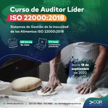 Auditor Lider 22000 CQR