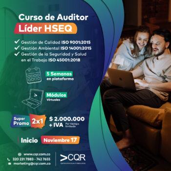 Auditores HSEQ Noviembre CQR