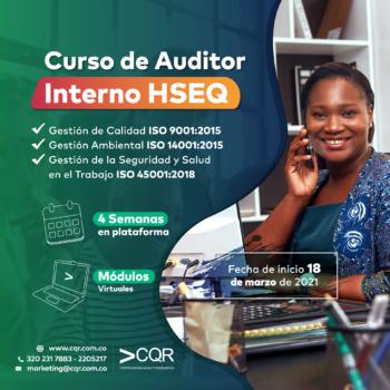Auditor Interno HSEQ Marzo
