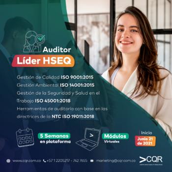 Auditor-Lider-HSEQ-Junio