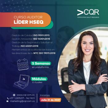Auditor-HSEQ-Julio-Lider